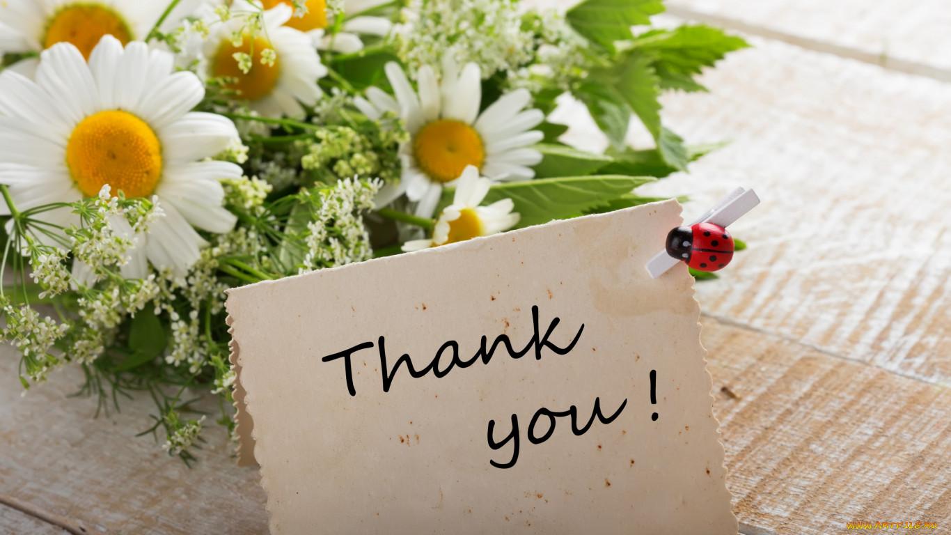Спасибо за поздравление тебе